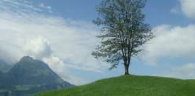 Поездки из Люцерна по Швейцарии со Swiss Pass